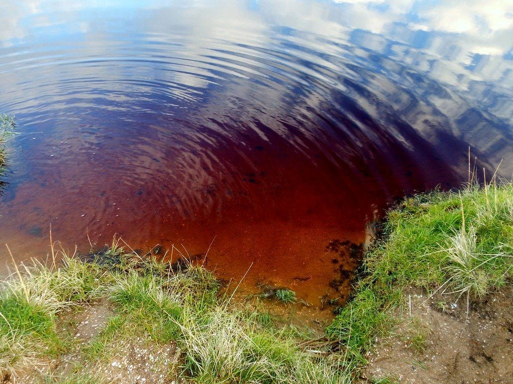 Heard of Coca-Cola Lake? Read Interesting Facts Here