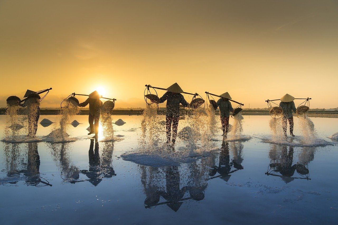 Attention! Vietnam Might Welcome Travellers From India From December. Check Details